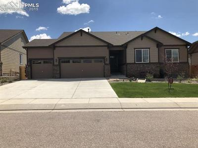 Peyton Single Family Home Under Contract - Showing: 10827 Mount Evans Drive