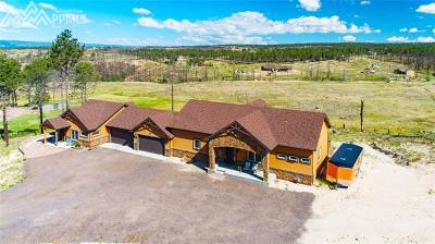 Colorado Springs Single Family Home For Sale: 6610 Trappers Pass Trail