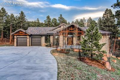 Single Family Home For Sale: 241 Thunder Ridge Drive