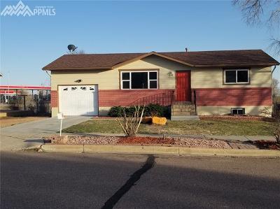 Colorado Springs Single Family Home For Sale: 1083 Branding Iron Circle