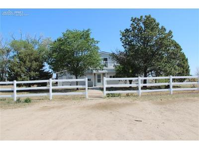 El Paso County Single Family Home For Sale: 23350 Highway 94
