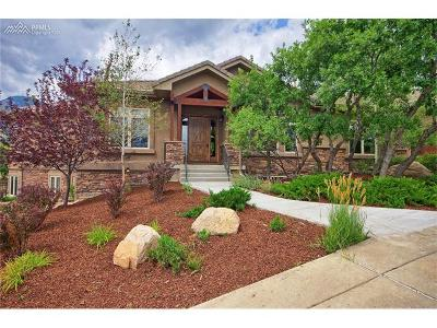 Colorado Springs Single Family Home For Sale: 420 Hidden Creek Drive
