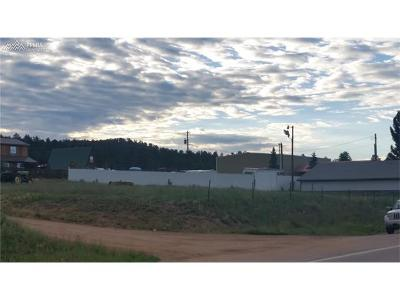Commercial For Sale: Lot 15-17 Highway 24 Highway