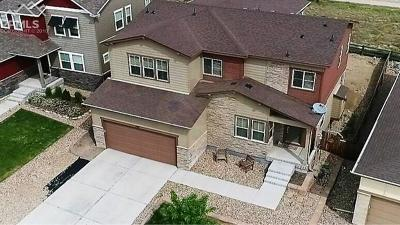 Castle Rock Single Family Home For Sale: 3311 Ghost Dance Drive