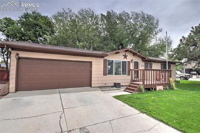 Calhan Single Family Home For Sale: 1028 Trinidad Street
