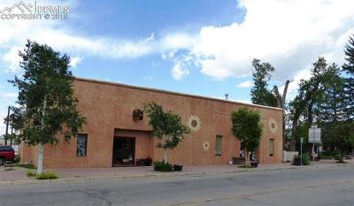 Commercial For Sale: 405 Main Street