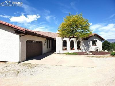 El Paso County Single Family Home For Sale: 1907 Payton Circle