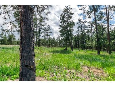 Monument Residential Lots & Land For Sale: 19405 Hilltop Pines Path