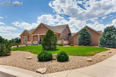 Castle Rock Single Family Home For Sale: 5302 Danvers Court