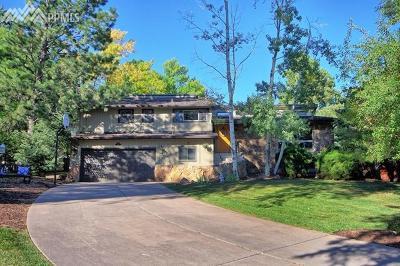 Colorado Springs Single Family Home For Sale: 40 Reno Scotty Terrace