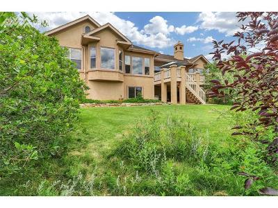 Colorado Springs Single Family Home For Sale: 1989 Diamond Creek Drive