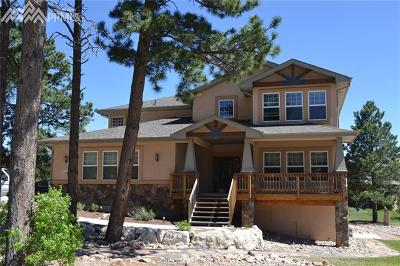 Single Family Home For Sale: 993 Greenland Forest Drive