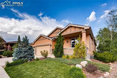 Colorado Springs Single Family Home For Sale: 9347 Lizard Rock Trail