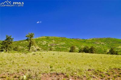 Canon City CO Residential Lots & Land For Sale: $135,000