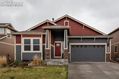 Colorado Springs Single Family Home For Sale: 1351 Alveston Loop