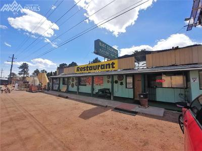 Commercial For Sale: 8655 W Highway 24 Highway