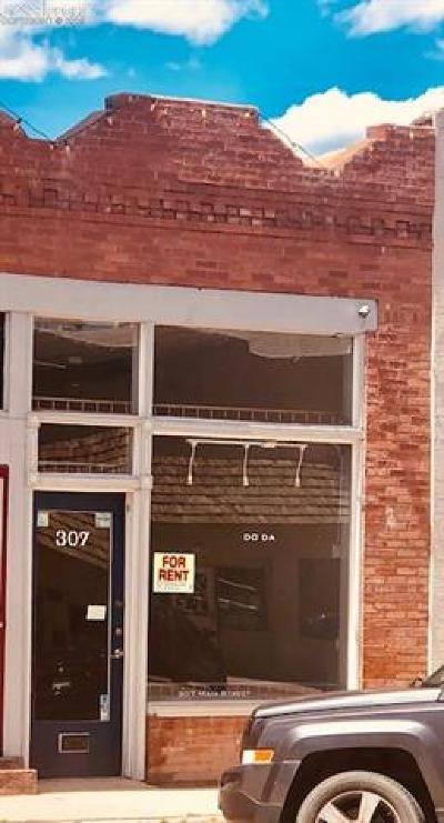 Commercial For Sale: 307 Main Street