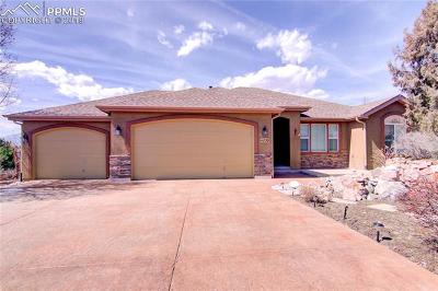 Single Family Home For Sale: 4839 Cedarmere Drive