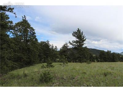 Guffey Residential Lots & Land For Sale: 00 Elk Mountain Road
