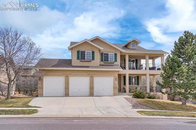 Colorado Springs Single Family Home For Sale: 12941 Serenity Park Drive