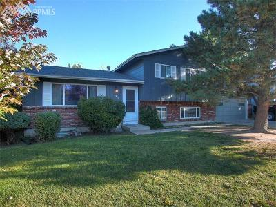 Colorado Springs Single Family Home For Sale: 2920 Del Rey Plaza