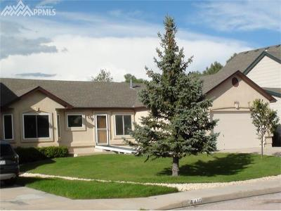 Colorado Springs Single Family Home For Sale: 4420 Bays Water Drive