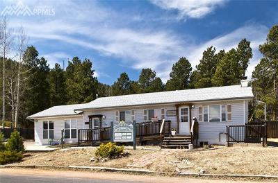 Woodland Park Single Family Home For Sale: 320 Burdette Street