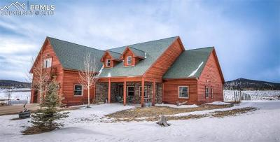 Cripple Creek Single Family Home For Sale: 11393 S Highway 67 Highway