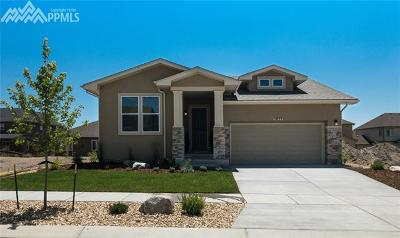 Colorado Springs Single Family Home For Sale: 5859 Thurber Drive