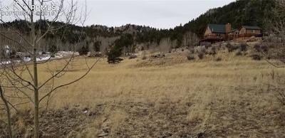 Lake George Residential Lots & Land For Sale: 35 Kiowa Trail