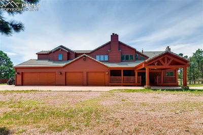 Colorado Springs Single Family Home For Sale: 13765 New Discovery Road