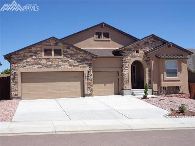 Colorado Springs Single Family Home For Sale: 2631 Farrier Court