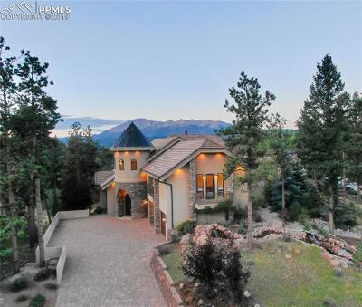 Douglas County, El Paso County, Park County, Teller County Single Family Home For Sale: 201 Eagles Perch Place