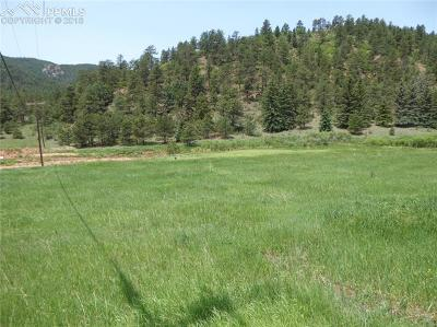 Woodland Park Residential Lots & Land For Sale: Tbd County 21 Road