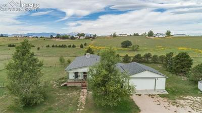 Peyton Single Family Home For Sale: 14150 Falcon Highway