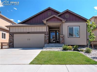 Monument Single Family Home For Sale: 17855 Smelting Rock Drive