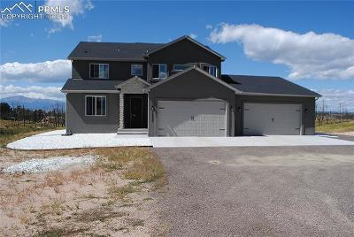 Colorado Springs Single Family Home For Sale: 12660 Black Forest Road