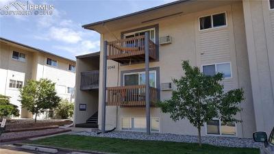 El Paso County Rental For Rent: 5042 El Camino Drive #89
