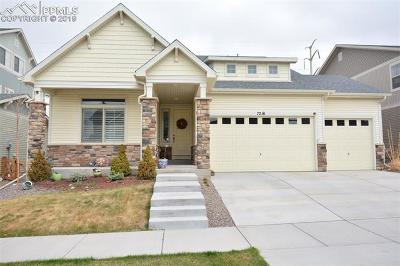 Colorado Springs Single Family Home For Sale: 7216 Horizon Wood Lane