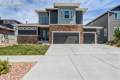 Colorado Springs Single Family Home For Sale: 8286 Misty Moon Drive