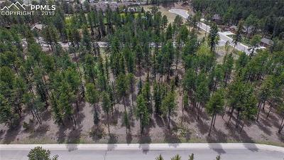 Woodland Park Residential Lots & Land For Sale: 625 Chipmunk Drive
