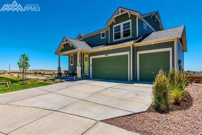 Colorado Springs Single Family Home For Sale: 8465 Longleaf Lane