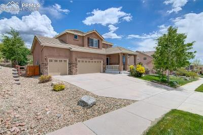 Colorado Springs Single Family Home For Sale: 13475 Canyons Edge Drive