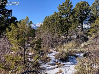 Colorado Springs Residential Lots & Land For Sale: 6035-Lot13 Briarcliff Road