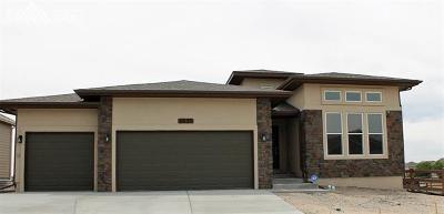 Single Family Home For Sale: 6839 Black Saddle Drive