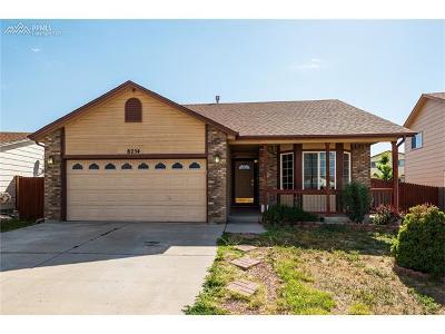 Colorado Springs Single Family Home For Sale: 8254 Hidden Pine Drive