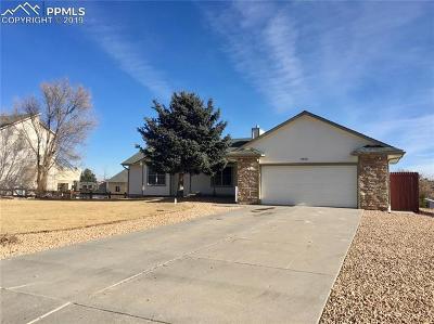 Peyton Single Family Home For Sale: 9835 Liberty Grove Drive