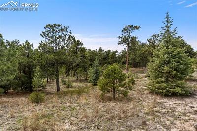 Colorado Springs Residential Lots & Land For Sale: 7165 McShane Road