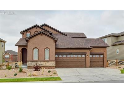 Single Family Home For Sale: 7056 Jagged Rock Circle