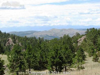 Cripple Creek Residential Lots & Land For Sale: Lot 4 Spring Canyon Road
